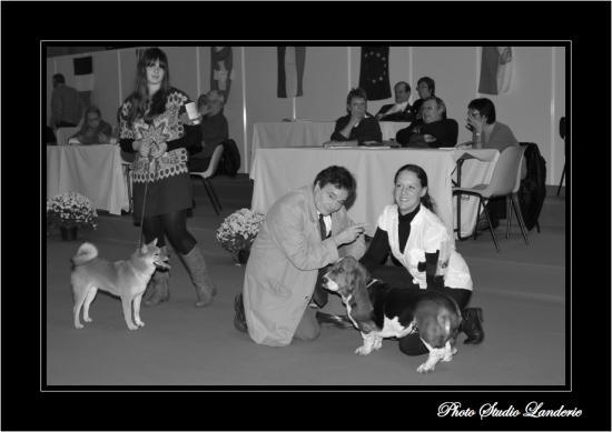canine-de-lorraine107.jpg